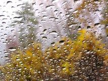 Gocce di acqua piovana sul vetro dall'interno immagini stock