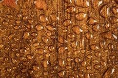 Gocce di acqua su struttura materiale di legno Immagini Stock Libere da Diritti