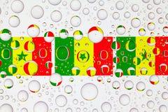 Gocce di acqua su vetro e sulle bandiere del Senegal immagine stock libera da diritti