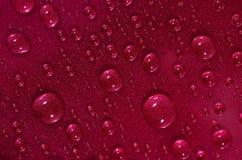 Gocce di acqua sulla superficie rossa Fotografia Stock Libera da Diritti