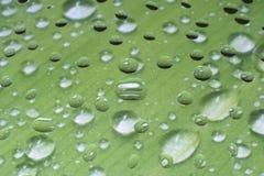 Gocce di acqua uniche su vetro Fotografie Stock Libere da Diritti