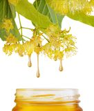 Gocce di miele dolce che gocciolano al barattolo Fotografia Stock