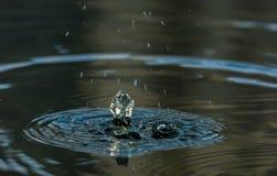 Gocce di pioggia in acqua Fotografie Stock