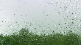 Gocce di pioggia che cadono su una finestra video d archivio