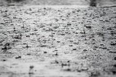 Gocce di pioggia che cadono in una pozza di gray Fotografie Stock