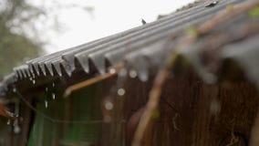 Gocce di pioggia che gocciolano dal tetto video d archivio