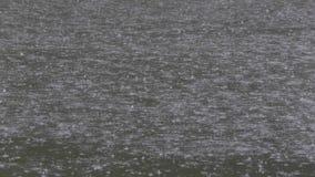 Gocce di pioggia pesanti sulla superficie dell'acqua video d archivio