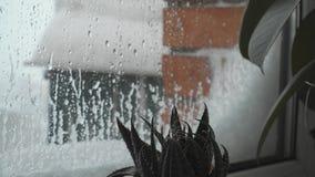 Gocce di pioggia su un concetto 4k di chane di clima polare del vetro di finestra archivi video