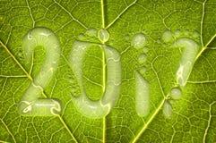 2017, gocce di pioggia su un fondo verde della foglia, un concetto di 2017 nuovi anni Fotografia Stock Libera da Diritti