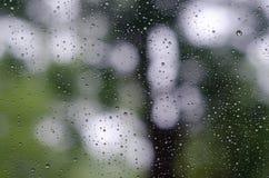 Gocce di pioggia su vetro e su Bokeh del fondo verde dell'albero Immagini Stock