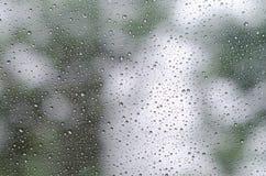 Gocce di pioggia su vetro e su Bokeh del fondo verde dell'albero Fotografia Stock