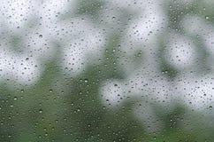 Gocce di pioggia su vetro e su Bokeh del fondo verde dell'albero Fotografie Stock Libere da Diritti
