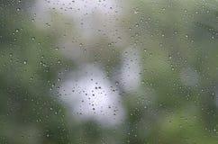 Gocce di pioggia su vetro e su Bokeh del fondo verde dell'albero Fotografie Stock