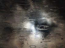Gocce di pioggia sul lago Immagine Stock Libera da Diritti
