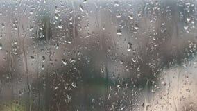 Gocce di pioggia sul pomeriggio di vetro in primavera archivi video