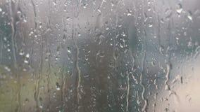 Gocce di pioggia sul pomeriggio di vetro in primavera stock footage