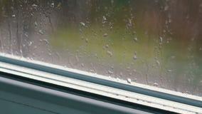 Gocce di pioggia sul pomeriggio di vetro in primavera, nei precedenti che passano le automobili stock footage