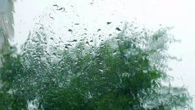 Gocce di pioggia sul vetro di finestra, costruzioni nei precedenti Vista dalla finestra della casa, tempo tempestoso, forte archivi video