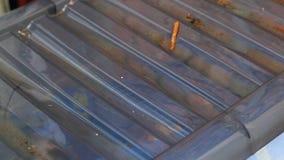 Gocce di pioggia sulla copertura di scatola archivi video