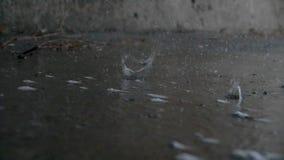 Gocce di pioggia in un primo piano della pozza al rallentatore archivi video