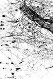 Gocce nere astratte sulla ragnatela Fotografie Stock Libere da Diritti