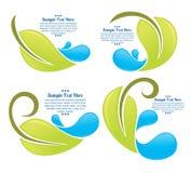 Gocce verdi dell'acqua e del foglio Fotografie Stock