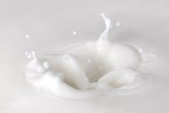 Goccia del latte Immagine Stock