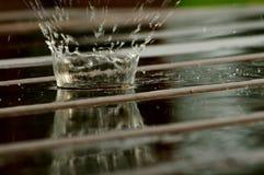 Goccia della pioggia Fotografia Stock