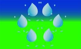 Goccia della pioggia sul campo verde Immagini Stock