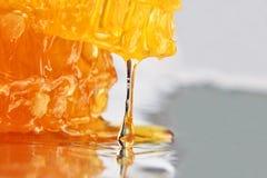 Goccia della sgocciolatura del miele dal primo piano del favo Immagini Stock