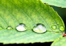 Goccia di acqua Fotografie Stock