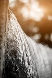 Goccia di acqua congelata in natura Paesaggio del lago Copyspace del chiarore per testo e progettazione Fotografie Stock