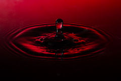 Goccia di acqua del primo piano su fondo rosso Fotografie Stock Libere da Diritti