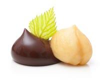 Goccia di cioccolato con il dado Immagine Stock Libera da Diritti