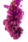 Goccia di colore inchiostro rosa e rosso su fondo bianco Immagini Stock Libere da Diritti