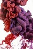 Goccia di colore rosso sporco, magenta, viola Fotografie Stock Libere da Diritti