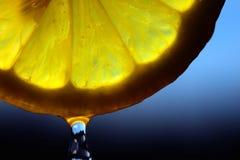 Goccia di limone Fotografie Stock Libere da Diritti