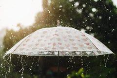 goccia di pioggia che cade sull'ombrello con il tramonto ed il verde Immagini Stock Libere da Diritti