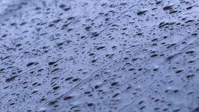 Goccia di pioggia sulla finestra stock footage