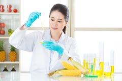 Goccia femminile asiatica dello scienziato per effettuare ricerca genetica di modifica Fotografie Stock