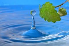 Goccia naturale di acqua fotografia stock