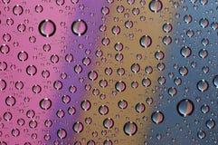 Goccia sui tre di vetro Fotografia Stock Libera da Diritti