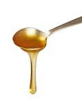 Gocciolamento del miele dal cucchiaio Fotografie Stock Libere da Diritti