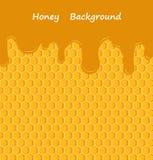Gocciolamento del miele di vettore sui favi Fotografie Stock