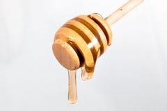 Gocciolamento del miele isolato Fotografie Stock Libere da Diritti