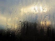 Gocciolato in pioggia su vetro fotografie stock libere da diritti