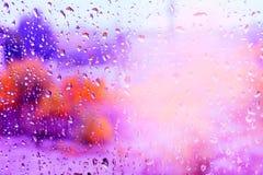 Goccioline di pioggia su una finestra fotografia stock