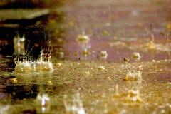 Goccioline di una pioggia Immagini Stock Libere da Diritti