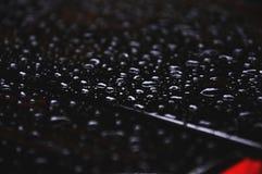 Goccioline sul tetto nero del dettaglio dell'automobile Fotografie Stock Libere da Diritti