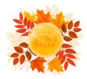 Goce de la bandera de Autumn Sales con las hojas de otoño Foto de archivo libre de regalías